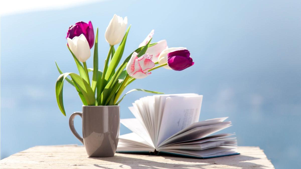 Три книги в жанре нон-фикшн: читает и делится впечатлениями контент-отдел Work.ua