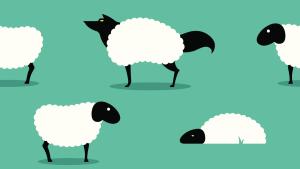 Волк в овечьей шкуре: как понять, что коллега вам завидует и хочет навредить