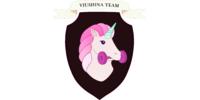 Viushina Team