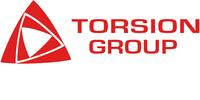Torsion group