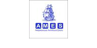 AmES Language Academy (LLC, JVC)