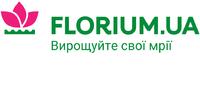 Флоріум Сервіс, ТОВ