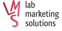 LMS (Лаборатория Маркетинговых Решений)
