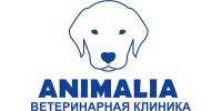 Animalia, ветеринарная клиника