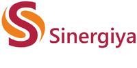 Синергия, рекрутинговая компания