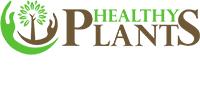 Healthy Plants