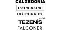МНС Інвестмент (Intimissimi, Calzedonia, Tezenis, Falconeri)