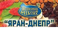 Яран Днепр, ООО с ИИ