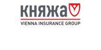 Княжа, українська страхова компанія