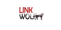 Digital Agency Linkwolf